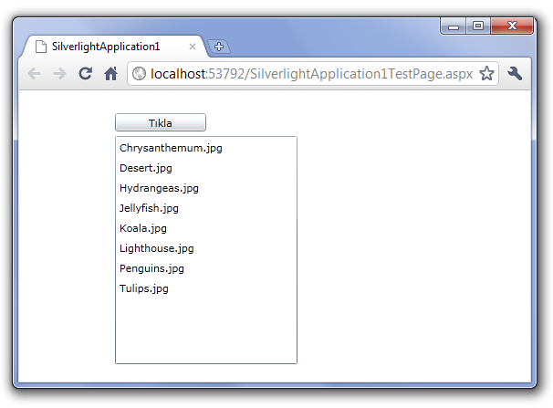 silverlight application with webservice